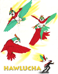 Hawlucha: Obviously a Giant Hummingbird by UnoSombrero