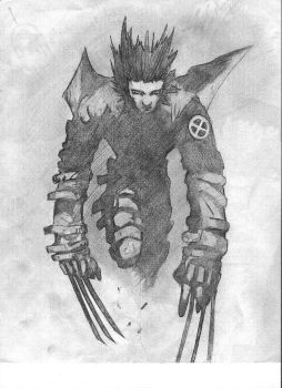 wolverine by heretic6