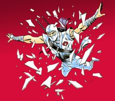 Storm Shadow Color by LostonWallace