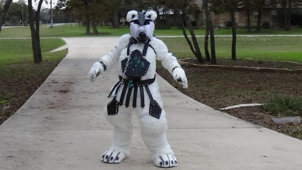 Nanuq in his armor! by CrazyShibaLady