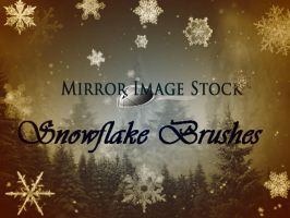 Snowflake Brushes by mirrorimagestock