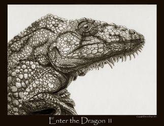 Enter the Dragon 11 by Ellygator