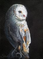 Wise Old Bird - acrylic aceo by Giselle-M