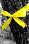 tie a yellow ribbon. by nerakoitap14-64