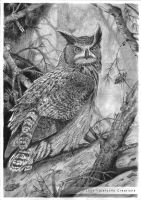 Great Horned Owl by ValeforHo