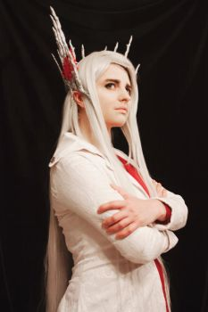Thranduil Mirkwood cosplay [2] by the-ALEF