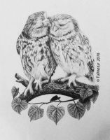 Two owls in love (wedding card comission) by Tulinatur