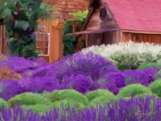 CottageWithLavender001small by xxchef