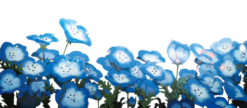 Flores [PNG Random] 14 by Keary23