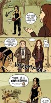 Person of Interest - Root and Shaw comic by Maarika