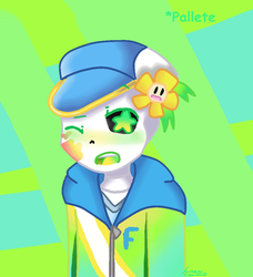 Pallete by MagitaleSans