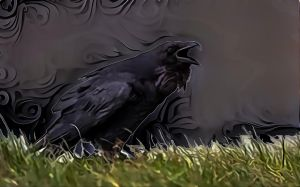 Crow by DonkehSalad23