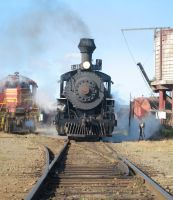 Skunk Train Steaming Up by paploothelearned