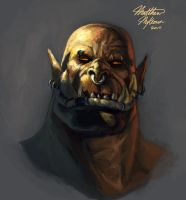 Garrosh Study by Kanaru92