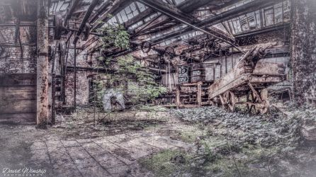 Reclaimed by nature by Vitaloverdose