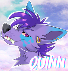 /Quinn.Badge.CM/ by MrSpitzy
