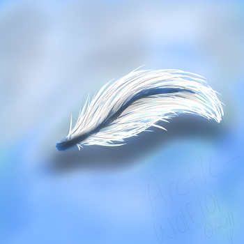 Angel Feather by Arctic-Wolf101