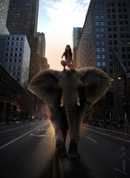 Elephant in New York by Luciis2