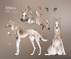 ITHICA (custom) by Volinfer