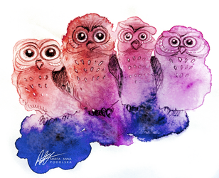 Funny Owls by ISHAWEE