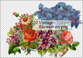 Vintage Flowers on Png. by mylightbluesky