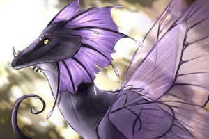 Little Dragon by Andiliion