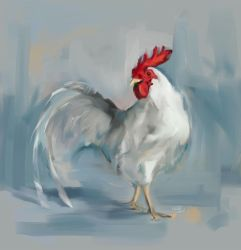 Rooster by Fievy