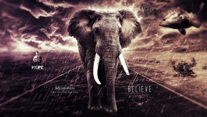 Hope And Believe by xvsvinay
