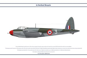 Mosquito France 1 by WS-Clave