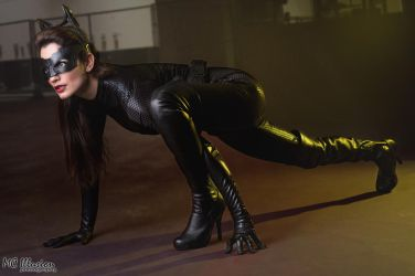 Purrrr Catwoman by Ivy95