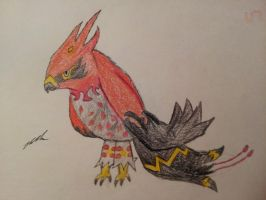 Pokemon X and Y: Mega Talonflame