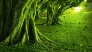 GREEN LAND by Topas2012