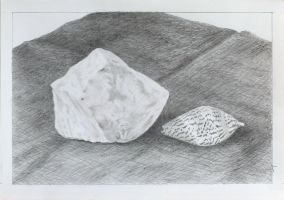 'Still Life _ Quartz Rock and Seashell' by Denish-C