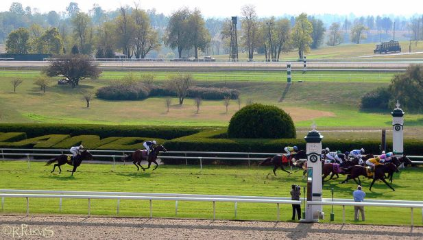 Keeneland races by VisualNature