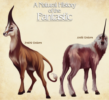 Unicorn Species- Natural History of the Fantastic by Christopher-Stoll