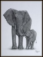 Elephant mom and baby by IngeLammers