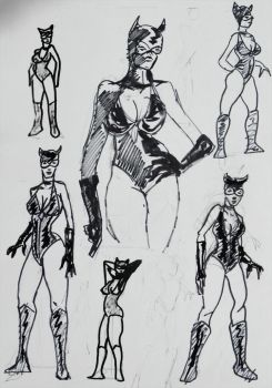 Catwoman  Ingenious by DECIPHER66