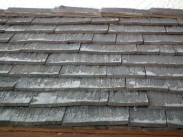Cedar Shingle Roof 04 by Limited-Vision-Stock