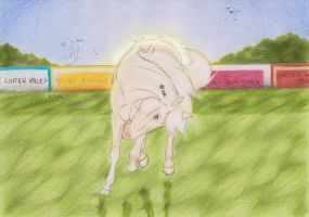 Let's get Crazy by Shehy