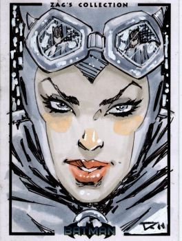 catwoman sketchcard by qualano
