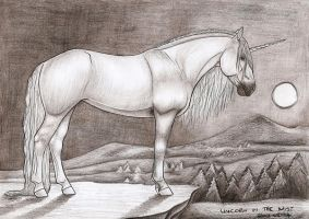 Unicorn In The Mist Traditional 2012-05 by Blood-Huntress
