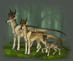 Arne family by Anisis