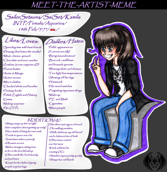 Meet The Artist Meme by SailorSetsuna