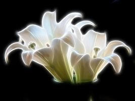 Glowing Lilies Fantasy Stock by Moonchilde-Stock