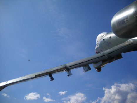 A-10A Thunderbolt II by olive-turtle
