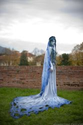 The corpse bride by Maxsy66