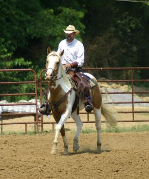 cowboy shooting26 by volte-stock