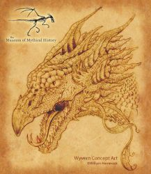 Museum Wyvern by whammock