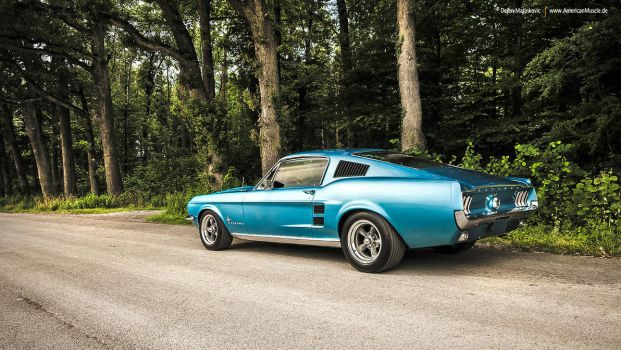 1967 Fastback - Shot 4 by AmericanMuscle