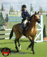 Akhal Teke in Show Jumping by Lady-Orcanie